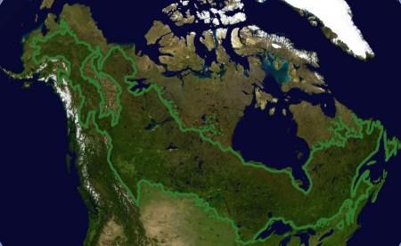 Estensione della foresta boreale canadese