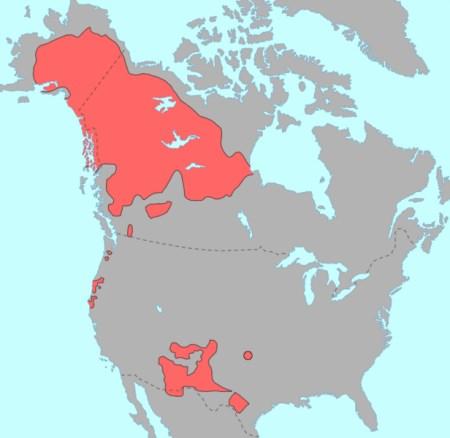 Distribuzione dei popoli di lingua Athabaska nel Nord America