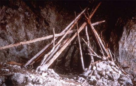 Un esempio di struttura del wickiup degli Sheepeater